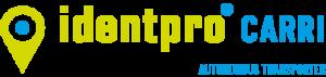 Logo identpro FTF